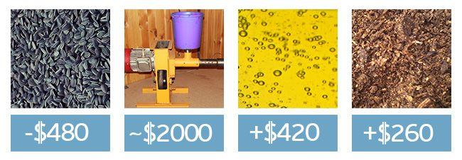 Затраты и доход от производства масла подсолнуха