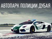 avtopark-policii-dubya-preview