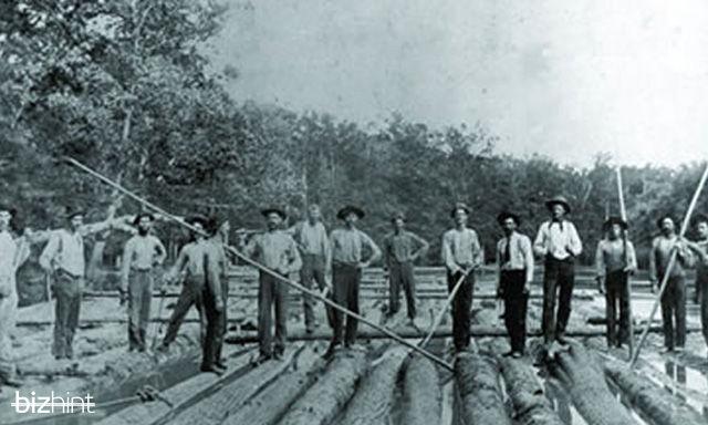 Добыча деревьев из реки в штате Флорида
